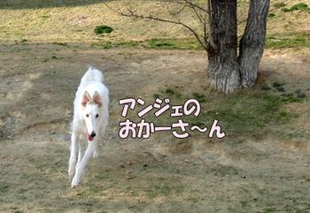 CIMG4789.jpg